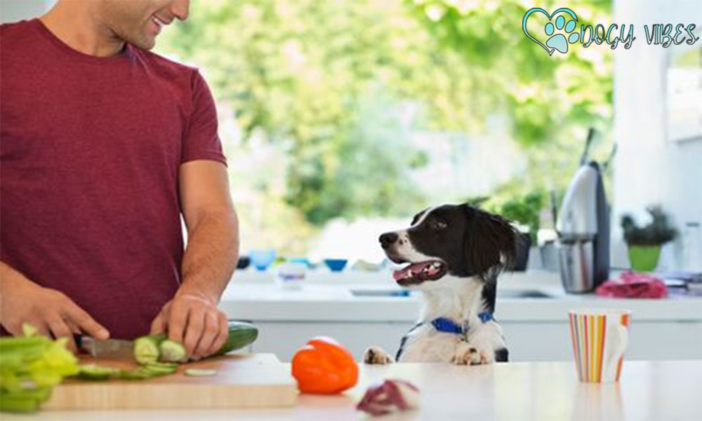 How do you prepare healthy home food for dogs ??