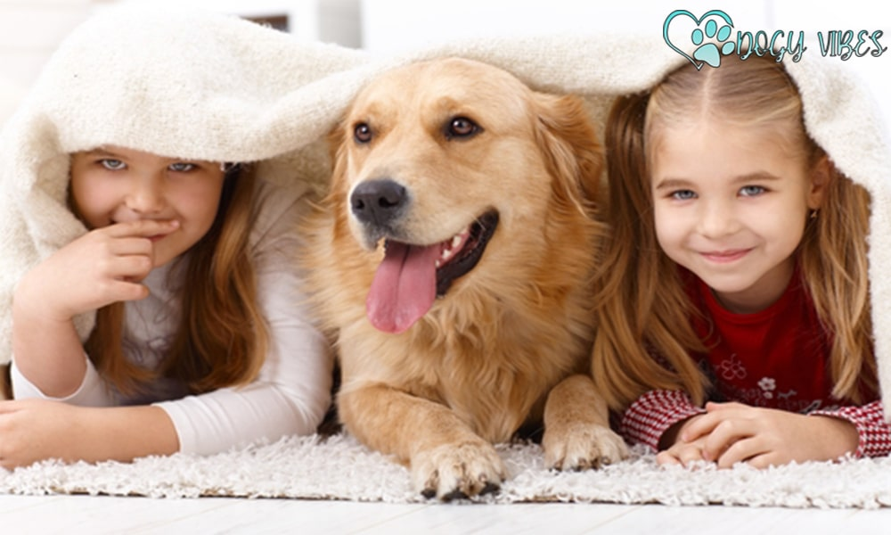 Top tips for getting a family-friendly dog